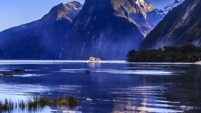 Going to New Zealand