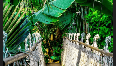 arenal-skywalk-in-costa-rica